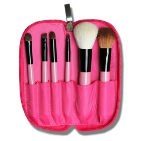 6 Pcs High Quality Professional Brush Set