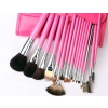 Brand New Wolf Hair 16 Pcs Professional Brush Set