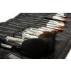 Professional Makeup Brush Set 22 Pcs