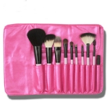 Shiny Professional 10 Pcs Cosmetic Brush Set