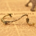 European Style Vintage Personalized East Dragon Stud Earring