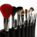 Professional Brush Set With Free Case 16 Pcs